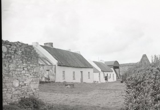 Agricultural Life On Scattery Island