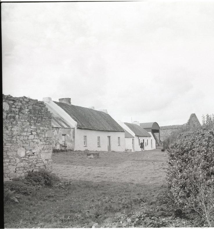 Agricultural Life On Scattery Island   Caoimhín Ó' Danachair National Folklore Collection UCD