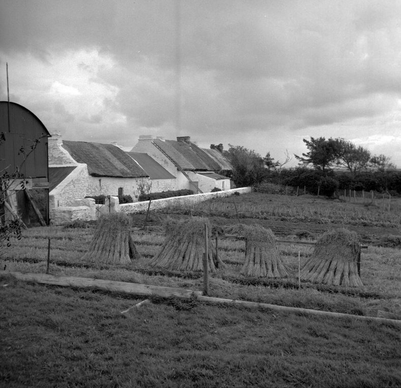 Transcripts and Stories From Scattery Island/Inis Cathaigh   Caoimhín Ó' Danachair National Folklore Collection UCD